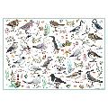 Madeleine Floyd Seabirds 500 Piece Jigsaw product photo additional image 4 T