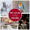 Fab forty RSPB charity Christmas cards - 40 pack 2020 product photo