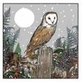 Silent night RSPB charity Christmas cards - 20 pack product photo Front View - additional image 1 T