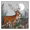 Silent night RSPB charity Christmas cards - 20 pack product photo additional image 4 T