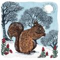 Winter's forage RSPB charity Christmas cards - 10 pack product photo