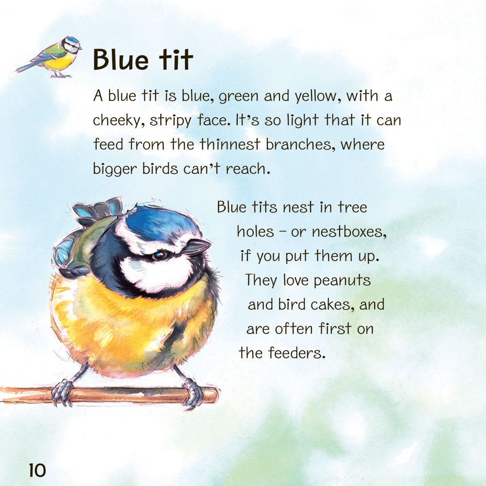 My First Book of Garden Birds product photo Front View - additional image 1 L