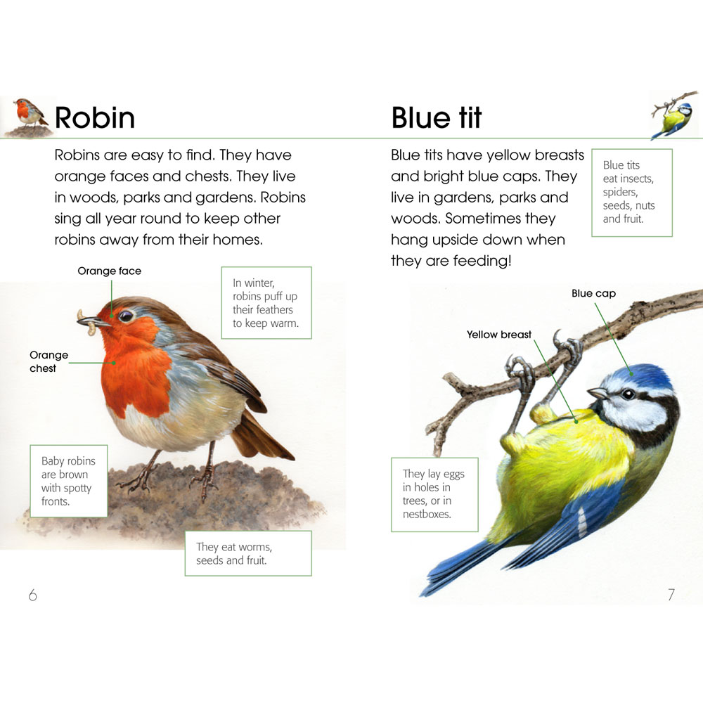 RSPB First book of birds product photo Front View - additional image 1 L